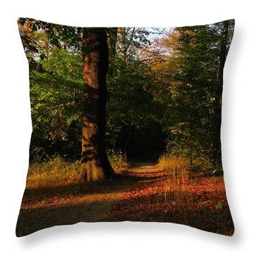Fall Forest Throw Pillow by Eva Csilla Horvath