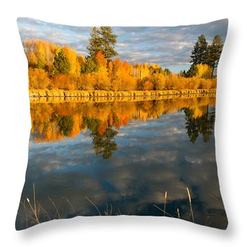 Throw Pillow featuring the photograph Fall Fractal by Kevin Desrosiers