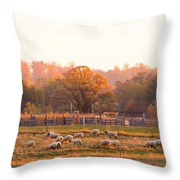 Fall Graze Throw Pillow