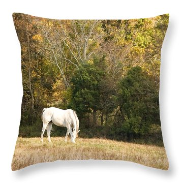Throw Pillow featuring the photograph Fall Grazing by Joan Davis