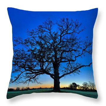 Fall Great Oak At Dawn Throw Pillow