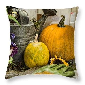 Fall Harvest Throw Pillow by Heather Applegate