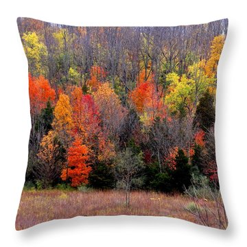 Throw Pillow featuring the photograph Fall In Dayton Ohio by Eric Switzer