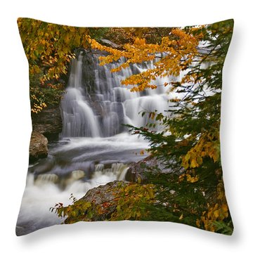 Fall In Fall - Chute Au Rats Throw Pillow