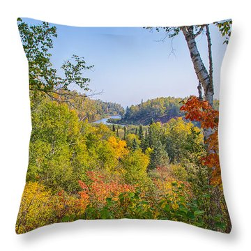 Fall In Gooseberry State Park Throw Pillow