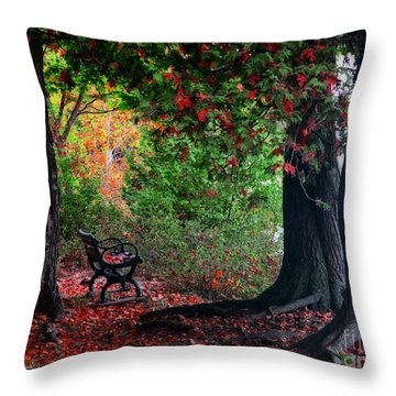 Fall In Henes Park Throw Pillow