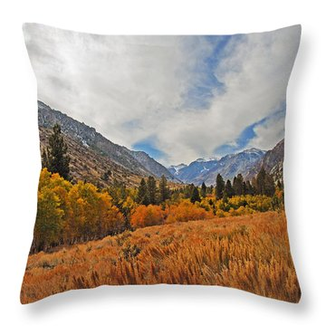Fall In Lundy Canyon Throw Pillow by Lynn Bauer