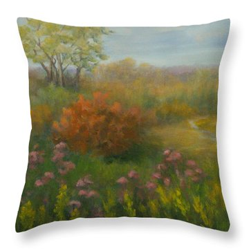 Fall In New England Throw Pillow by Pamela Allegretto