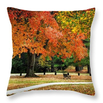 Fall In The Park Throw Pillow by Christina Rollo