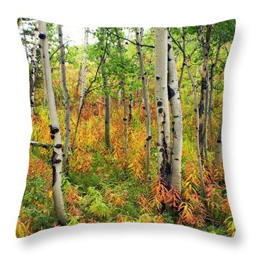 Fall In The Tetons Throw Pillow by Marty Koch