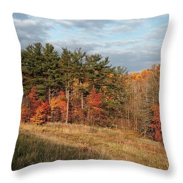 Throw Pillow featuring the photograph Fall In The Valley by Daniel Behm