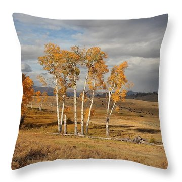 Fall In Yellowstone Throw Pillow by Daniel Behm