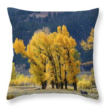 Fall In Yellowstone Throw Pillow