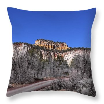 Fall In Zion National Park Throw Pillow