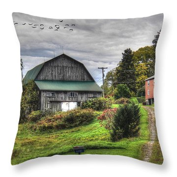 Fall Is Fast Approaching Throw Pillow