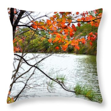 Fall Landscape 1 Throw Pillow by Lanjee Chee