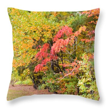 Fall Landscape 3 Throw Pillow by Lanjee Chee