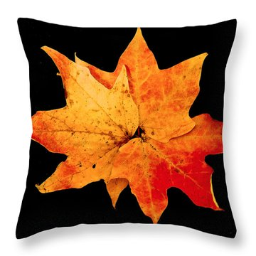 Throw Pillow featuring the photograph Fall Leaf Trio by Dee Dee  Whittle