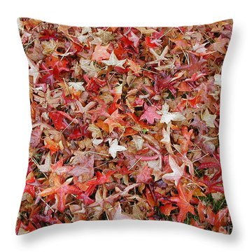 Fall Leaves Throw Pillow by Bev Conover