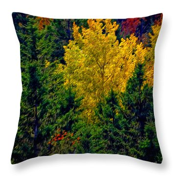 Fall Leaves Throw Pillow by Bill Howard
