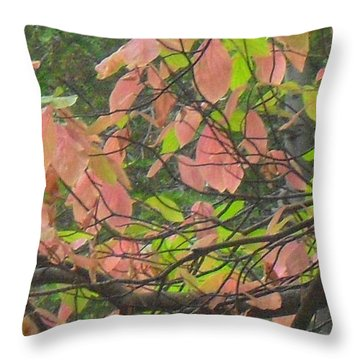 Throw Pillow featuring the photograph Fall Leaves by Kristen R Kennedy
