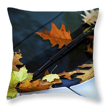 Fall Leaves On A Car Throw Pillow by Elena Elisseeva