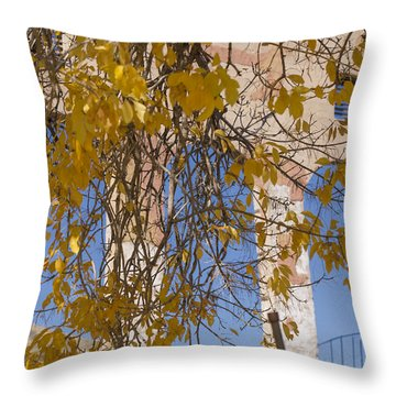 Fall Leaves On Open Windows Jerome Throw Pillow by Scott Campbell