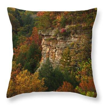 Fall Light Throw Pillow