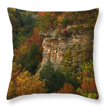 Fall Light Throw Pillow