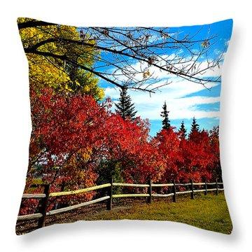 Fall Lineup Throw Pillow
