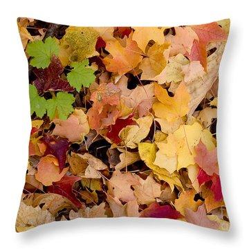 Fall Maples Throw Pillow by Steven Ralser