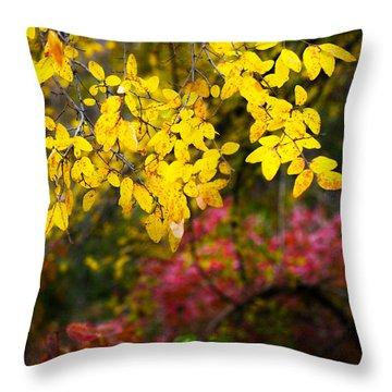 Fall Medley Throw Pillow