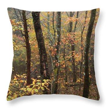 Fall Mist Throw Pillow