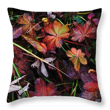 Throw Pillow featuring the photograph Fall Mix by Janice Westerberg