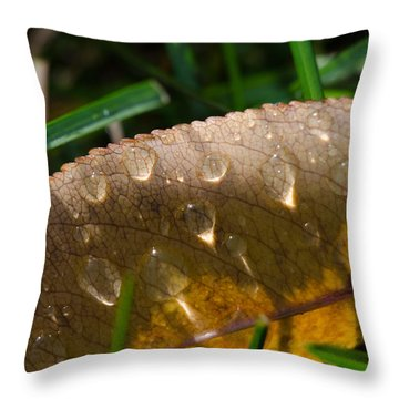 Fall Morning Leaf And Dew Throw Pillow