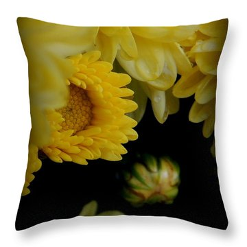 Fall Mums Growing At Blue Horse Rescue Throw Pillow