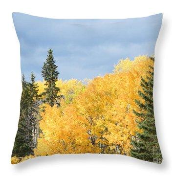Fall Near Ya Ha Tinda Throw Pillow