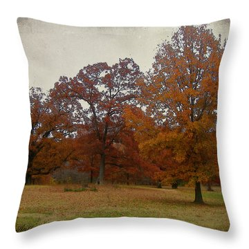 Fall On Antioch Road Throw Pillow
