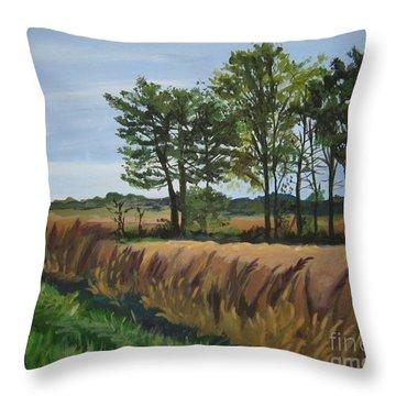 Fall On Douglas Road Throw Pillow