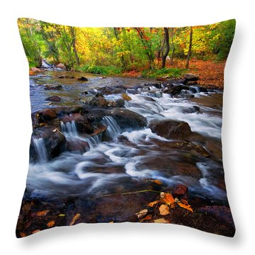 Throw Pillow featuring the photograph Fall On Fountain Creek by Ronda Kimbrow