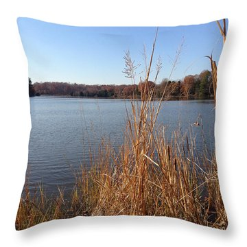 Fall On The Creek Throw Pillow