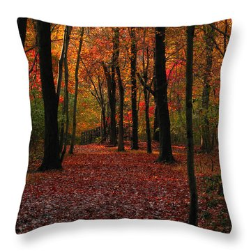 Throw Pillow featuring the photograph Fall Path by Raymond Salani III