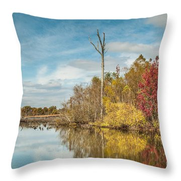 Throw Pillow featuring the photograph Fall Pond by Debbie Green