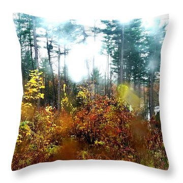 Throw Pillow featuring the photograph Fall Rain by Rose Wang