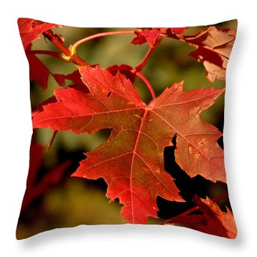 Fall Red Beauty Throw Pillow