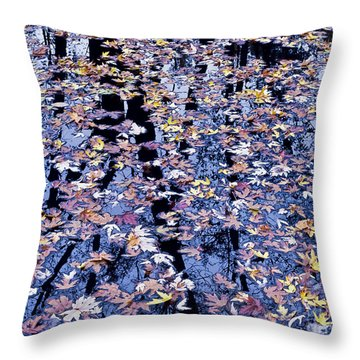 Throw Pillow featuring the photograph Fall Reflections by Alan L Graham
