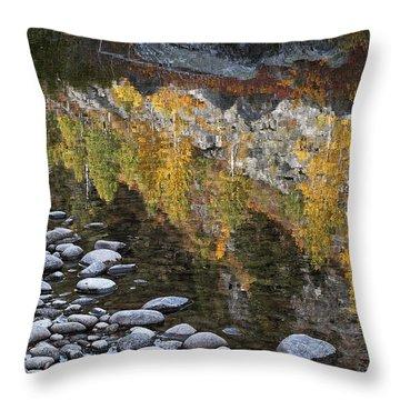 Fall Reflections I I I Throw Pillow
