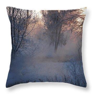Fall River Steam Throw Pillow