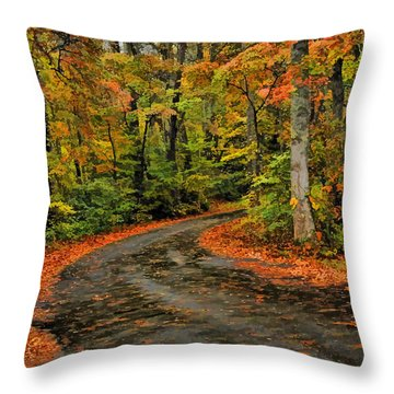 Fall Road To Glory Throw Pillow by Kenny Francis