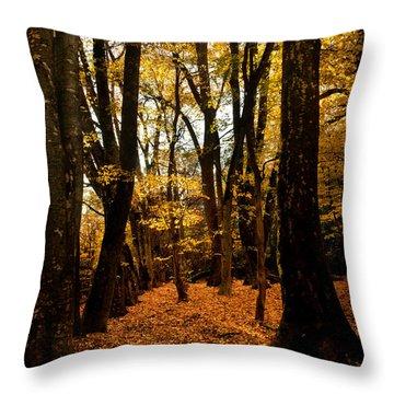 Fall Scene In Bidwell Park Throw Pillow